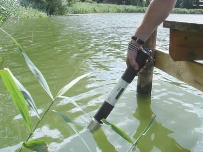 algae-torch