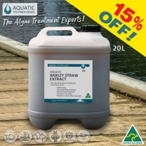 green-slime-in-pond-aquatic-barley-straw-extract-20L-15%