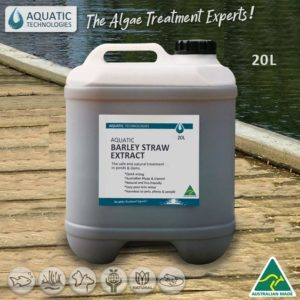 green-slime-in-pond-aquatic-barley-straw-extract-20L